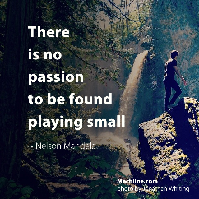 There is no passion to be found playing small - Nelson Mandela